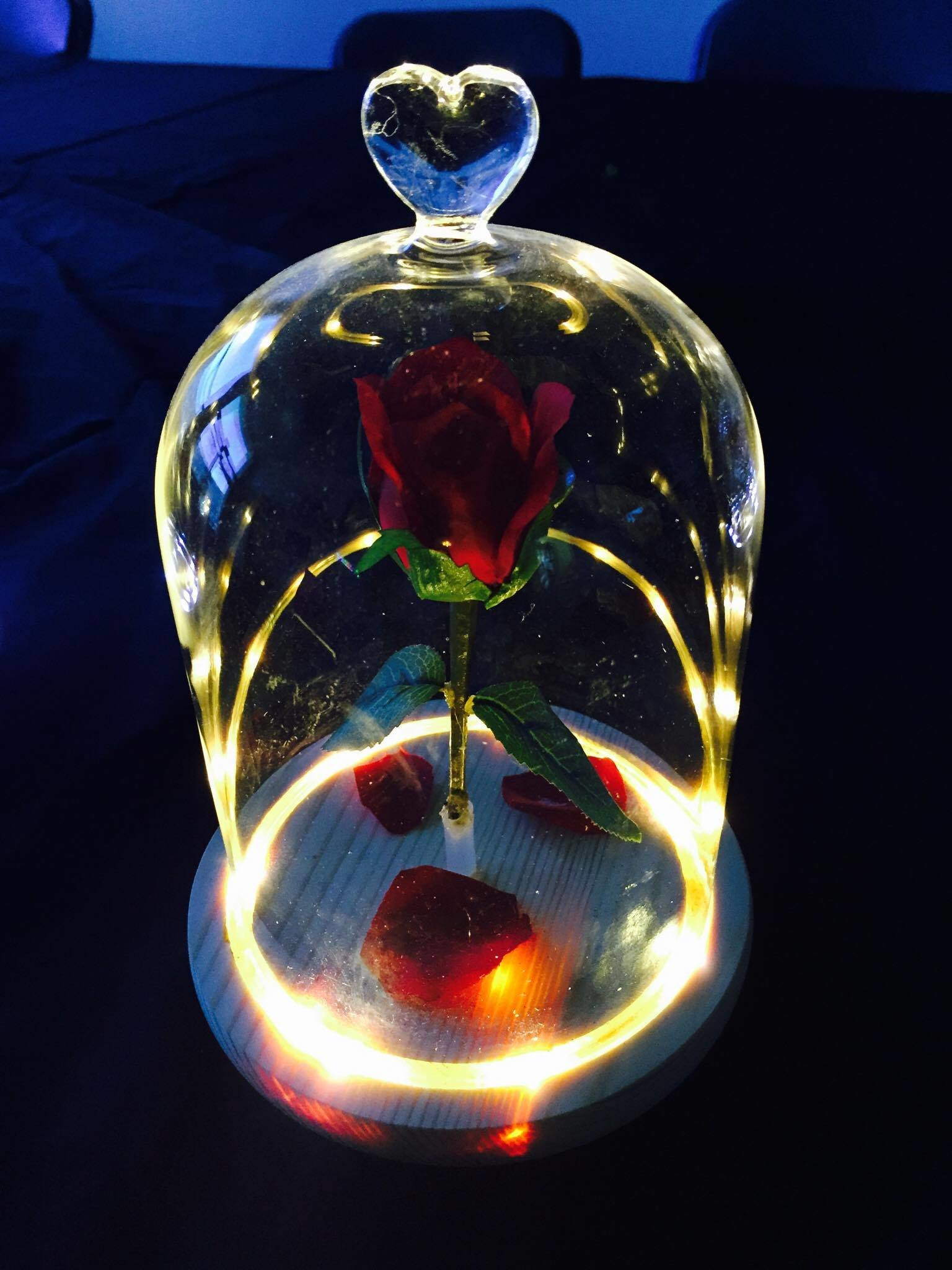 The Beauty And The Beast Enchanted Flower Rose Belle Glass Night